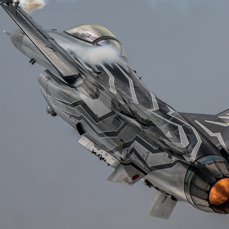 General Dynamics F-16AM Fighting Falcon reg FA-123